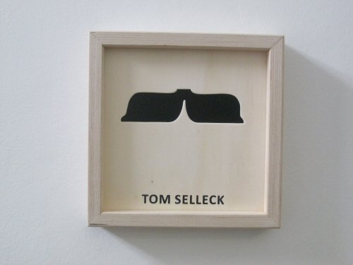 cut-famous-moustaches (15)