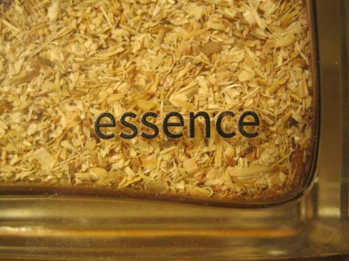 CUT-essence (5)